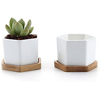 T4U 7CM Ceramic Six Sizes Sucuulent Plant Pot/Cactus Plant Pot With Bamboo Tray White Package 2 by T4U888