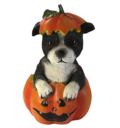 Home Decor LED Light-Up Dog in Pumpkin