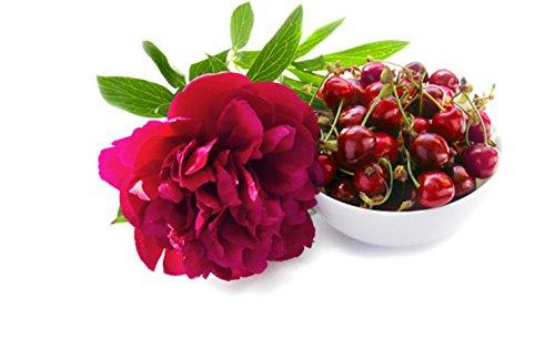 6-Piece Glade Luscious Cherry//Peony Wax Melts Cubes