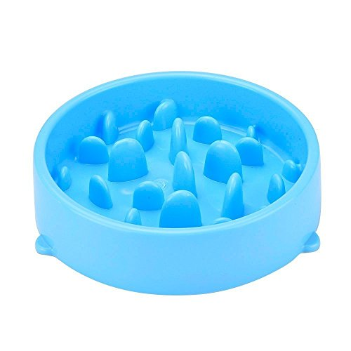 Carlie Diameter height Silicone Slow product image