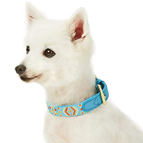 Blueberry Leather - Blueberry Pet 2019 New 6 Designs Magical Tribal Print Celeste Blue Polyester Fabric Webbing and Soft Genuine Leather Dog Collar, Medium, Neck 15