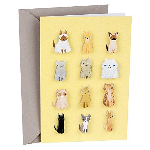 (Hallmark Signature Blank Card (Cute Cats))