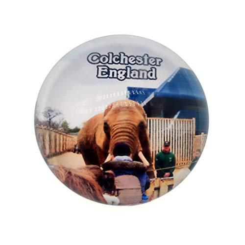 Colchester Zoo UK Fridge Magnet 3D Crystal Glass Tourist City Travel Souvenir Collection Gift Strong Refrigerator Sticker