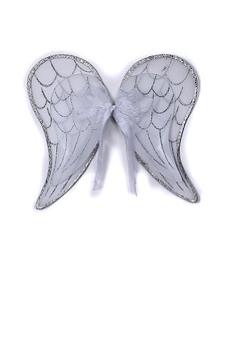 Angel Costumes For Little Girls (White and Silver Angel Wings Toddler Girl Costume Dress Up Wings Fits 2-14)