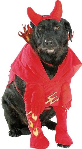 Devil Costume Dog (Devils Dog Pet Costume - Pet Costumes)