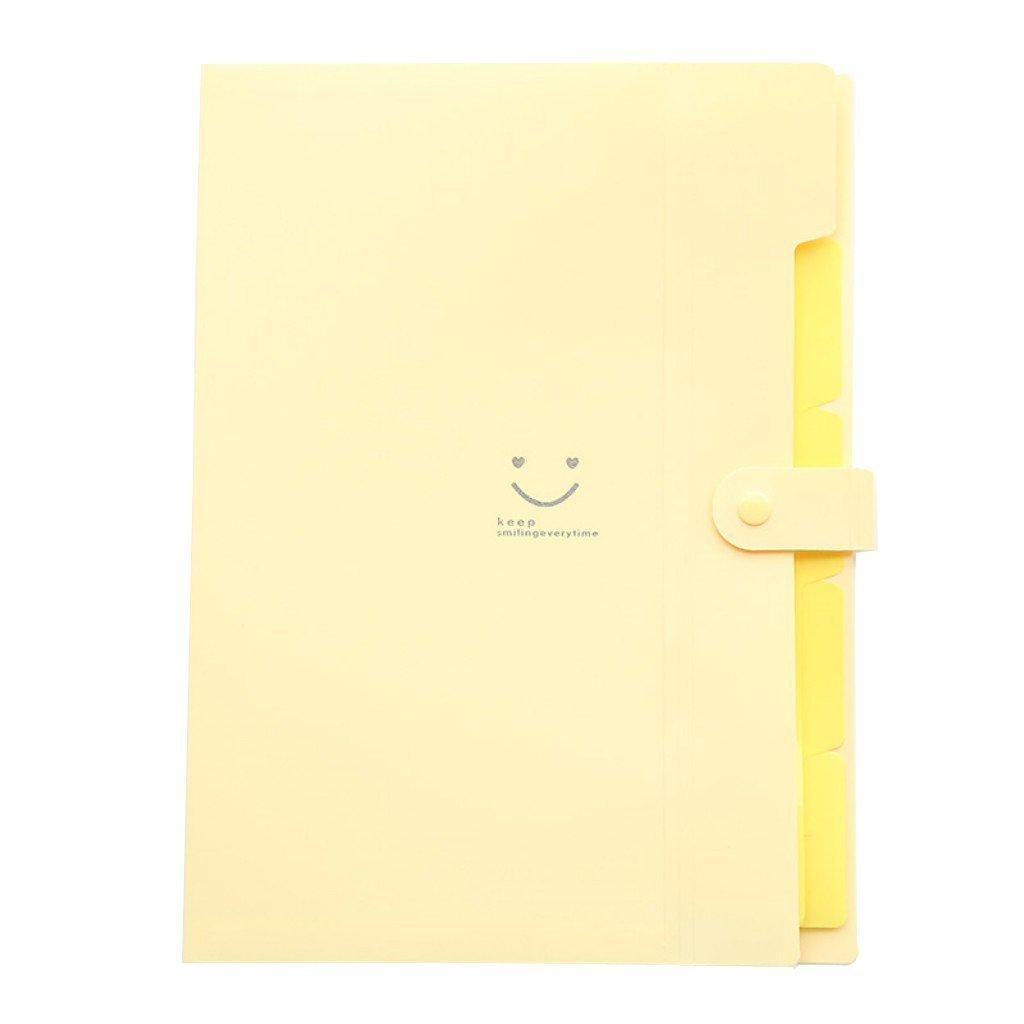 YooFun Smile Creative 5-pocket Expanding file Folder (Set of 4 Colors)