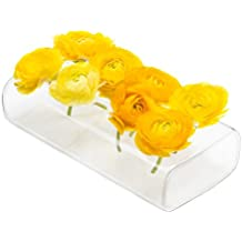"""Chive - Hudson 8"""" Rectangular Unique Glass Flower Vase, Elegant Low Laying Clear Glass Bud Vase with 8 Holes for flowers"""