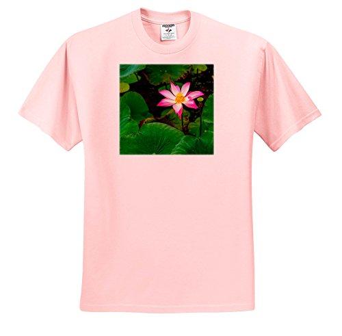 3dRose Danita Delimont - Flowers - Portrait Of a Lotus Blossom Flower, Ving Trang Pagoda, Vietnam, Asia - T-Shirts - Light Pink Infant Lap-Shoulder Tee (12M) (Pagoda Two Light)