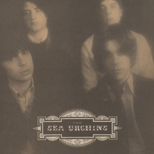 Please Don T Cry By The Sea Urchins On Amazon Music