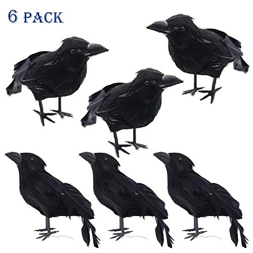 The Crow Halloween (ATDAWN Halloween Black Feathered Crows, Realistic Looking Halloween Decoration Birds, 6)