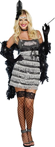 Adult Themed Costumes (Dreamgirl Womens Fancy Sexy Speak Easy Vixen Flapper 1920'S Adult Themed Costume, XL (14-16))