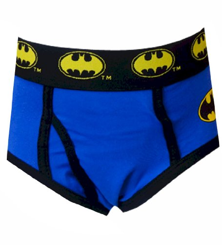 DC Comics Batman Blue Logo Briefs for Big Boys (Large)