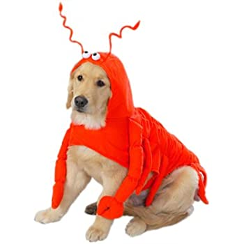 Amazon.com : LARGE LOBSTER PAWS Dog Halloween Costume : Pet Supplies