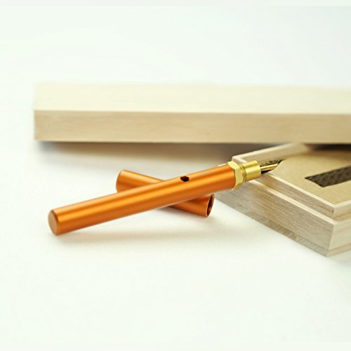 ion Fountain Pen, Orange, Fine Nib, Schmidt Gold-Plated Nib and Converter ()