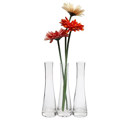 (ComSaf Small Glass Vase for Flower Bud Home Decor Clear 8.5 Inch, Pack of 3)