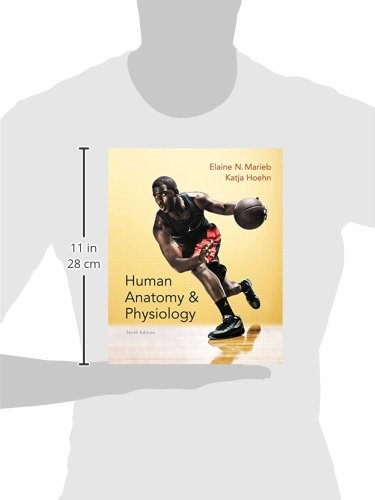 Human anatomy physiology plus mastering ap with etext access human anatomy physiology plus mastering ap with etext access card package 10th edition elaine n marieb katja n hoehn 9780321927026 anatomy fandeluxe Gallery