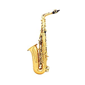 Andoer® Alto Saxophone Sax Eb Be Alto E Flat Brass Carved Pattern on Surface Plastic Mouthpiece Exquisite with Gloves Cleaning Cloth Brush Straps