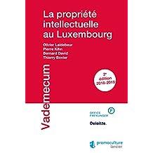 La propriété intellectuelle au Luxembourg (Vademecum) (French Edition)