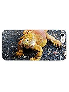 3d Full Wrap Case for iPhone 5/5s Animal Galapagos Land Iguana by rushername
