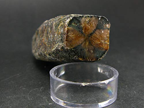 Andalusite Chiastolite Crystal From China - 2.7