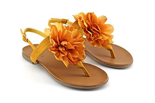 MODELISA Women's Fashion Sandals lemon tree 3ArHg