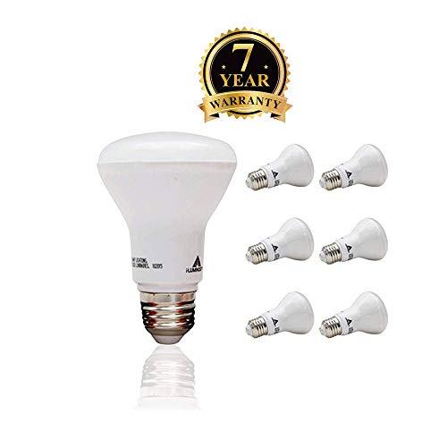 Small Led Flood Light Bulbs in US - 1