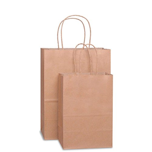 BagDream Kraft Paper Bags 5x3x8& 8x4.75x10, 50 Pcs Each, Gift Bags, Paper Bags,Shopping Bags with Handles Paper, Shopping Bags, Craft Bags, 100% Recyclable Paper by BagDream