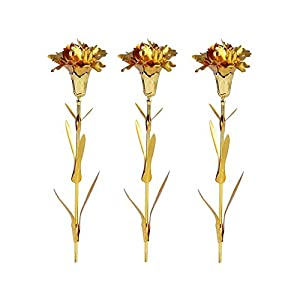R STAR 24K Gold Foil Artificial Carnation Flowers in Gift Box, for Girlfriend, Thanksgiving, Party, Wedding, Mother's Day, Friends, Romantic Gift, One Box Including 3 Flowers 92
