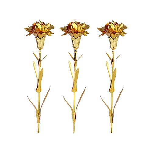 R STAR 24K Gold Foil Artificial Carnation Flowers in Gift Box, for Girlfriend, Thanksgiving, Party, Wedding, Mother's Day, Friends, Romantic Gift, One Box Including 3 Flowers(Gold)