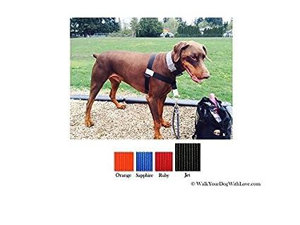 Walk Your Dog With Love Broadband - Arnés para Perro Grande (50 a ...