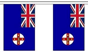 Banderines de poliéster con 30 banderas del estado de Gales del Sur de Australia – 9 m de largo