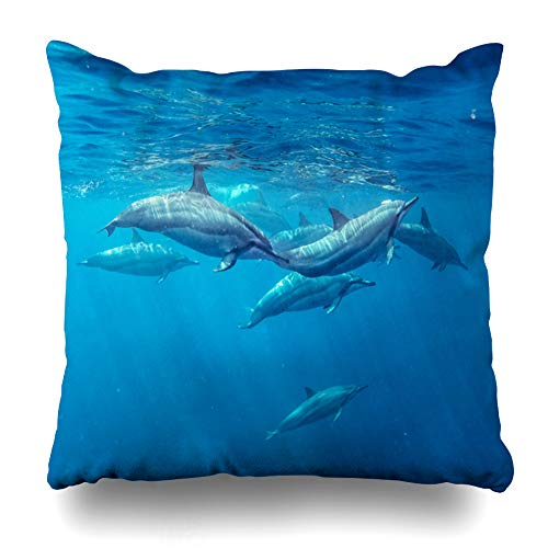 Waterfall Dolphin (Ahawoso Throw Pillow Cover Square 18x18 Love Blue Diving Spinner Dolphins Mauritius Indian Mammal Ocean Summer Red Waterfall Snorkeling Design Adventure Pillowcase Home Decor Cushion Case)