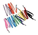 Authentic Puppia Two Tone Lead, Purple, Medium, My Pet Supplies