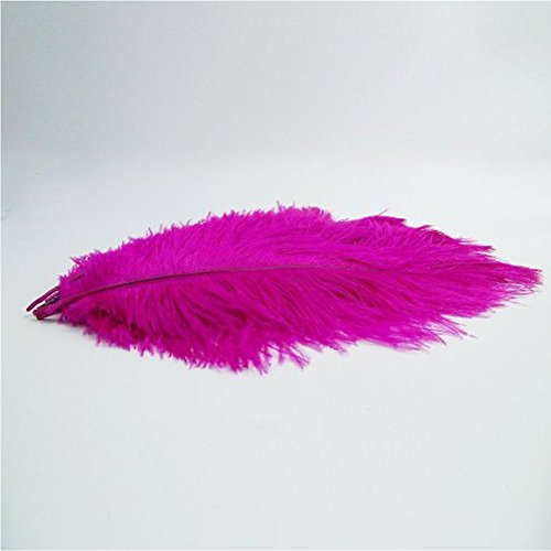 KOLIGHT 100pcs Ostrich Feather Rose-red 10