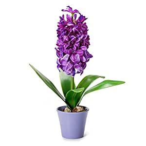 Mkono Artificial Flowers with Vase Faux Silk Hyacinth Potted Plant Floral Arrangements for Home Kitchen Office Wedding Decor, 12 inches