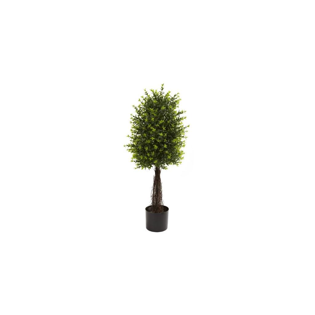 35-Ixora-Topiary-UV-Resistant-IndoorOutdoor