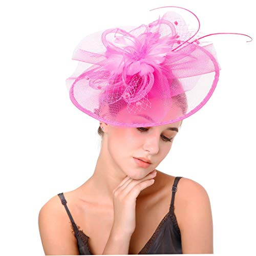 Ladies Day Feather Hair Fascinator Hats for Melbourne Cup Day Prix de Diane Grand National -