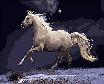 Suubboo Sin Marco Diy Corriendo Caballo Blanco Arte Imágenes Dibujo