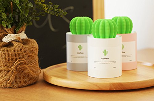 Liferry Mini Cactus Humidifiers,Cute USB Portable Cool Mist Air Diffuser with Auto Shutdown for Office Home Desk Car Travel(Grey)