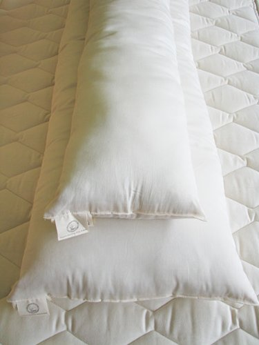 Holy Lamb Organic Body Pillow - Buddy by Holy Lamb Organics