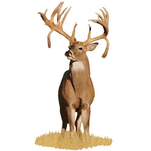 Mossy Oak Graphics 22002-C 'Deer Double Drop Tine Buck' Cut-Out Indoor Graphics
