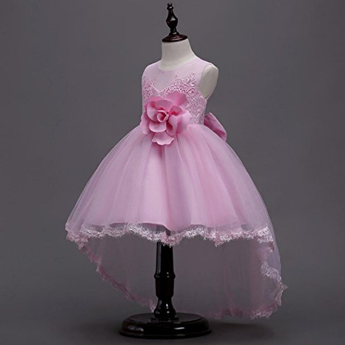 Transer Floral Baby Girl Princess Bridesmaid Pageant Gown Birthday Party Wedding Dress Pk