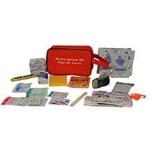 Small Perfect Survival Kit, Earthquake Kit, Commuter Kit for Auto, Home or School from SafeCastle