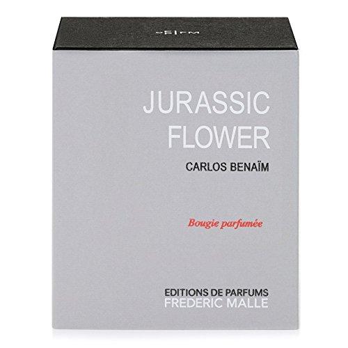 【1着でも送料無料】 Frederic Malle Jurassic Flower (Pack Scented Candle 220g 220g (Pack of x4 4) - フレデリックマルジュラ紀の花の香りのキャンドル220グラム x4 [並行輸入品] B0718YZ42J, アイダスチェラウナボルタ:438e9059 --- a0267596.xsph.ru