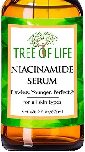 Niacinamide B3 Face Moisturizer Serum, DOUBLE SIZE