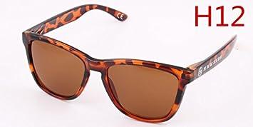 LXKMTYJ Männer und Frauen auf die Bewegung der Sonnenbrille Rückspiegel Kröte Gläser Angeln Brillen Sonnenbrillen Mode, H12 Sonnenbrille