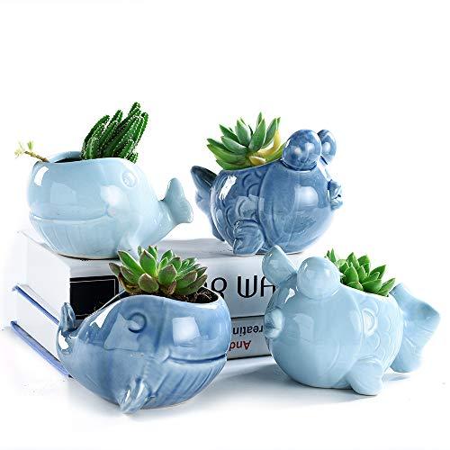 (SUN-E 4.72 Inch Blue Whale&Goldfish Ocean Ceramic Base Serial Set Succulent Plant Pot Cactus Plant Pot Flower Pot Container Planter with Drainage Hole Perfect Gift Idea 4 in Set)