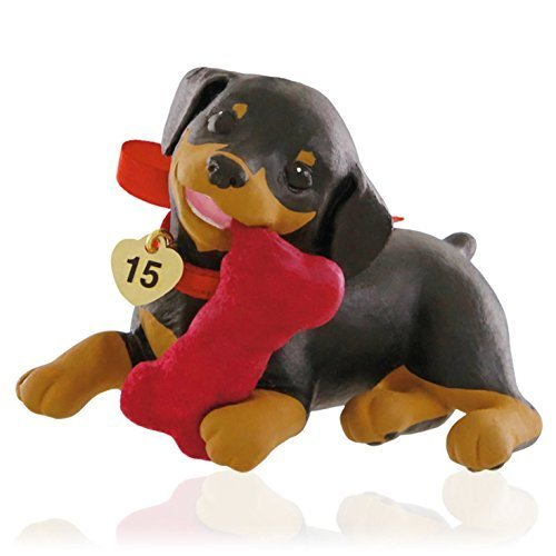 Hallmark Doberman Puppy Love Ornament ()