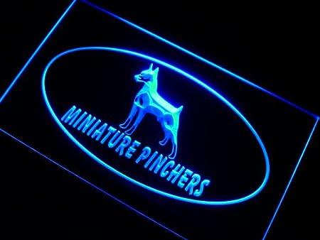 ADVPRO Cartel Luminoso j989-b Miniature Pinchers Dog Neon ...