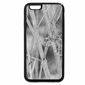 iPhone 6S Plus Case, iPhone 6 Plus Case (Black & White) - Branch Of Winter Berries